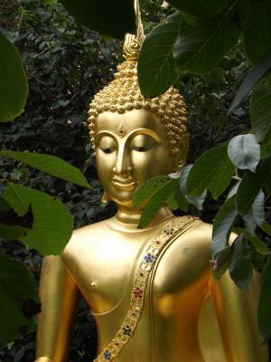 Buddha_oben_2015