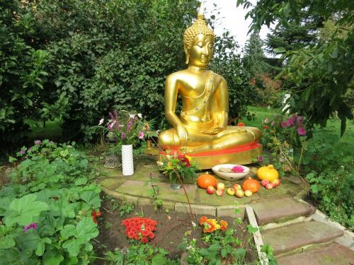 E_Eroffnung._Buddha