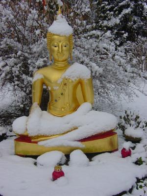 W_Buddha_mit_Schneehaubchen